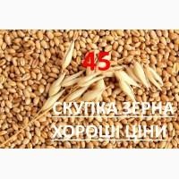 Зерноторгова компанія на постійній основі закупляє зерновідходи кукурудзи