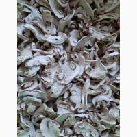 Продаємо сушені шампіньйони та сухий грибний порошок, Тернопіль