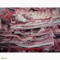 Свинину и говядину продам оптом из Польши