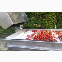 Барботажная моечная машина для мойки овощей и ягод