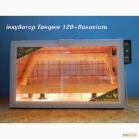 Лучшие инкубаторы тандем с закладкой от 60 до 3000 яиц
