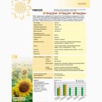 Посівний матеріал соняшника Рімісол (Євро-Лайтінг) м.Нові Сад (Сербія)
