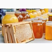 Закупка мёда от 500 кг по всей Украине