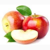 Підприємство закуповує яблука на переробку по всій Україні, ДОРОГО з місця