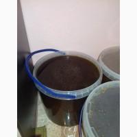 Продам гречишный мед высшего сорта цена 70гр за1кг
