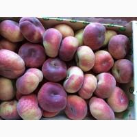 Плоский персик. Косточковые фрукты от испанского производителя