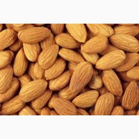 Selling Almond Nuts