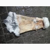 Купую шкіри кроля у івано-франківську