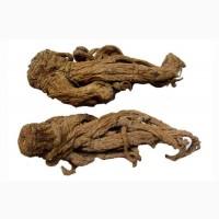 Любисток корень (измельчённый 3-5мм) 50 грамм