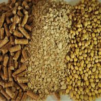 Соевый шрот Бразилия 445 СIF / Soybean meal