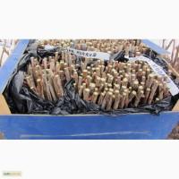 Продам вкорінені живці чорної смородини