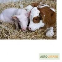 Заменитель цельного молока для с/г животных