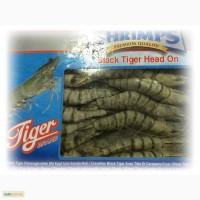 Креветка тигровая сырая с головой