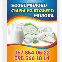 Продам козье молоко и сыры из козьего молока