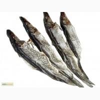 Рыбоперерабатывающий цех продаёт речную вяленую рыбу