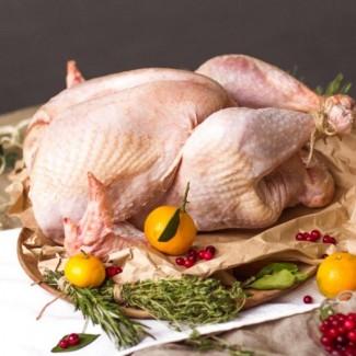 Тушки индейки, домашней курицы и утки под заказ
