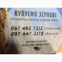 Куплю опт кукурудзу висока ціна швидка оплата