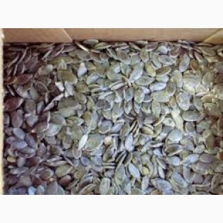 Продам гарбузове насіння голе тыквенную семечку голосемянка