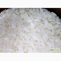 Продам рис круглый опт