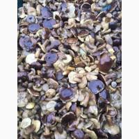 Продам солоно-варені гриби