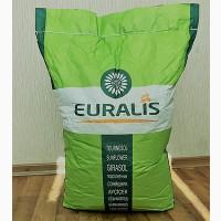 Семена подсолнечника EURALIS ES BELLA/Евралис Белла