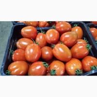 Реализуем помидоры