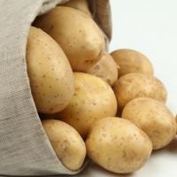 Свежий желтый картофель, Киев +13525096148