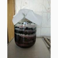 Продам сироп из ягод бузины черной