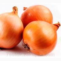 Продам семена лука репчатого Делфис F1 Allium Италия