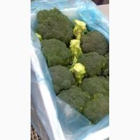 Брокколи и овощи из Испании