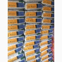 Распродажа семян подсолнечника Неома Санай Сумико Фортими Мегасан 5580