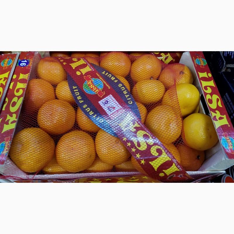 Продам мандарин сорт Сатсума(турция), Одесская обл.