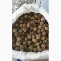 Продам орех 28 (минус)