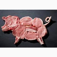 Продам свиней, мясо
