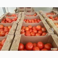 Лоток помидорный, тара для помидоров, гофротара