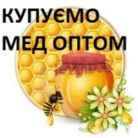 Купую мед! /акация, рапс, цветочный/