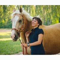 Продажа солового коня