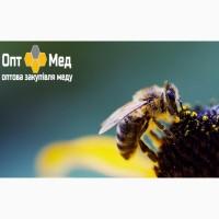 Закупаем мед в центральной Украине ОПТ-МЕД