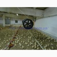 Обладнання для птахофабрик та свинокомплексів, Вентиляція та Обігрів