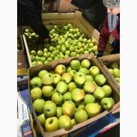 Продамо якісне яблуко з холодильника.Ред Чіф, Фуджі, Грені Сміт, Голден