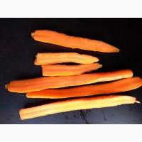Морковка для производства снеков