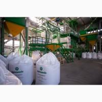 Продам посевную пшеницу - Сорт Богдана (1 репродукция) Агротрейд