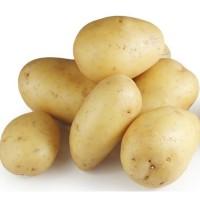 Свежий желтый картофель, Киев +13525096148, Винницкая обл