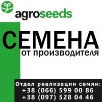 Семена от производителя. Яровой ячмень (элита) - Вакула, Галичанин, Командор, Всесвит
