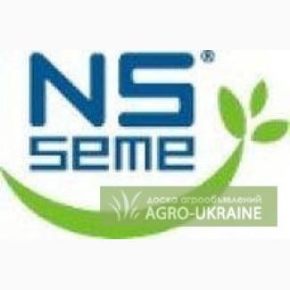 Семена подсолнечника Нови Сад (Novi Sad)