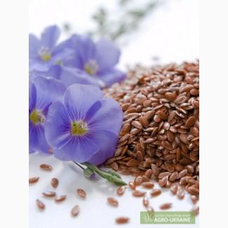 Лён семена, семена льна, посевной материал лён
