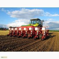 Продажа семян подсолнечника и кукурузы Тунка, Брио, Мегасан, Опера, Белла, ДК315, ДКС3511, Амарок
