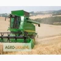 Предоставляем услуги по уборке урожая