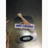 Куриная лапа класс Б(chicken paw grade В)
