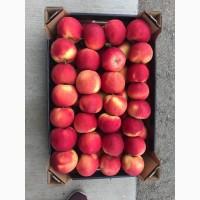 Подаю яблука сорт айдаред є обєм загазований